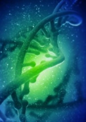 Image of BioteXcel DNA helix